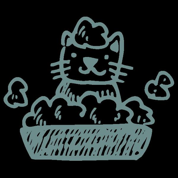 cat sitting bath paw-destrian